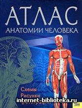 Севастьянова И. - Атлас анатомии человека